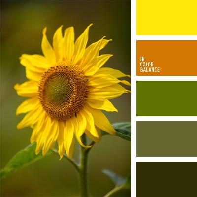 Paleta kolorów nr 110