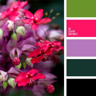 Paleta kolorów nr 158