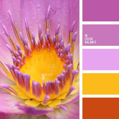 Paleta kolorów nr 161