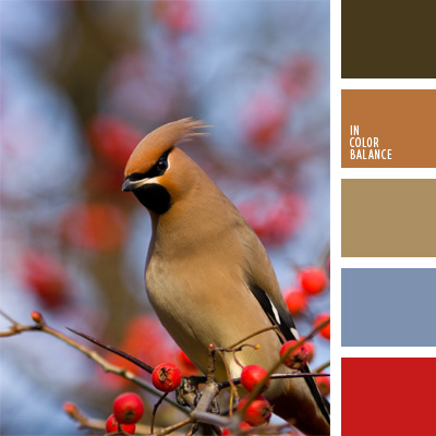 Paleta kolorów nr 178
