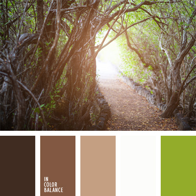 Paleta kolorów nr 185