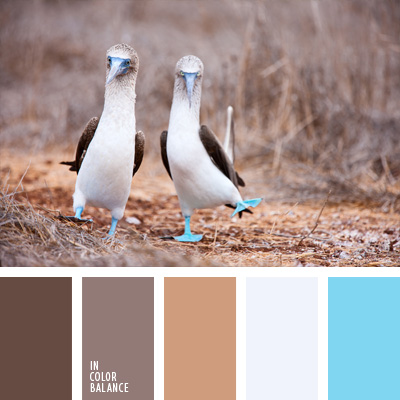 Paleta kolorów nr 187