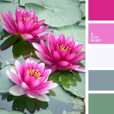 Paleta kolorów nr 204