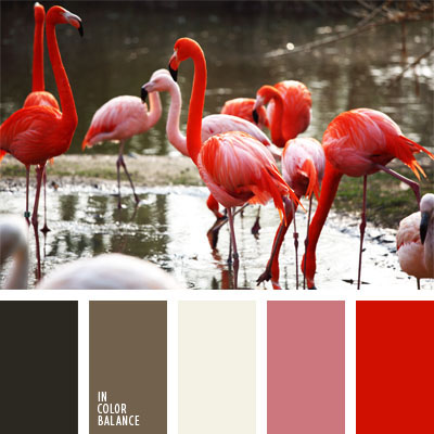 Paleta kolorów nr 21