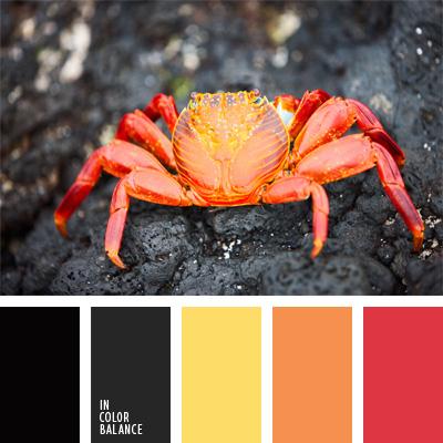 Paleta kolorów nr 211