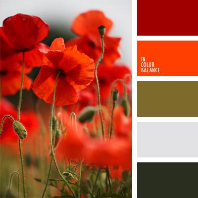 Paleta kolorów nr 234