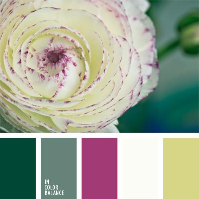 Paleta kolorów nr 239