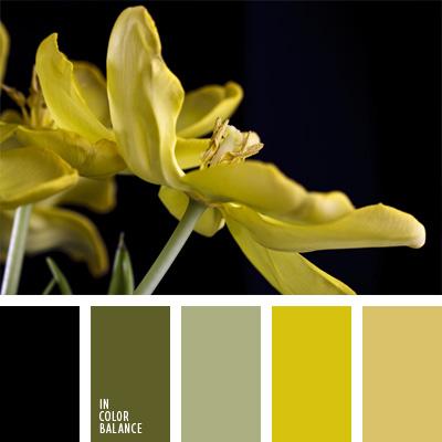 Paleta kolorów nr 246