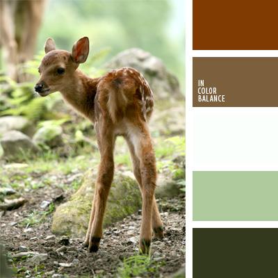 Paleta kolorów nr 255