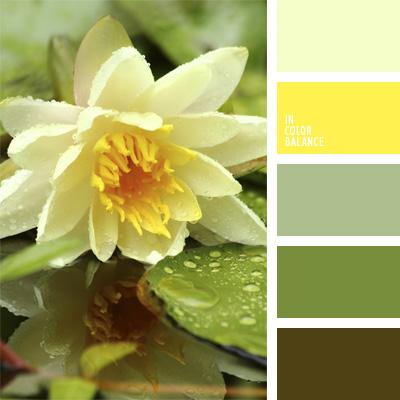 Paleta kolorów nr 26