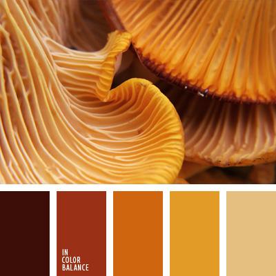 Paleta kolorów nr 281