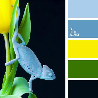 Paleta kolorów nr 284
