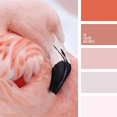 Paleta kolorów nr 288