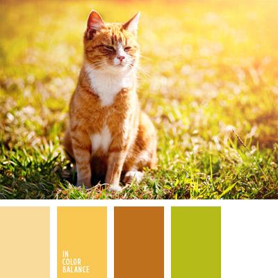 Paleta kolorów nr 295