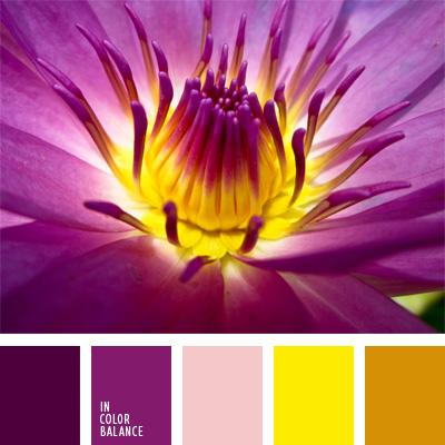 Paleta kolorów nr 63
