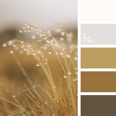 Paleta kolorów nr 67