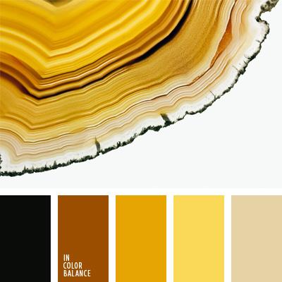 Paleta kolorów nr 70