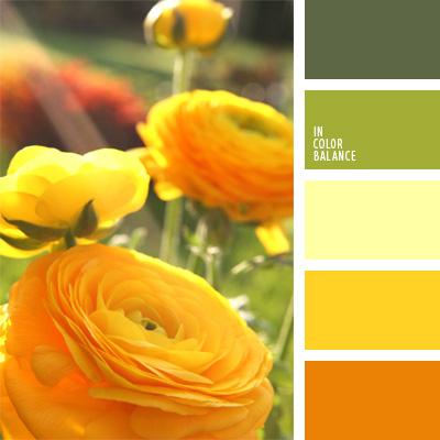 Paleta kolorów nr 72