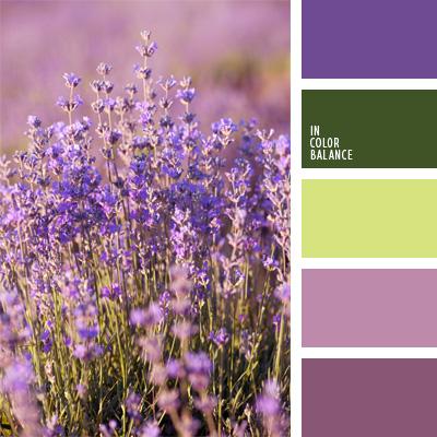 Paleta kolorów nr 79