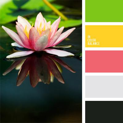 Paleta kolorów nr 82