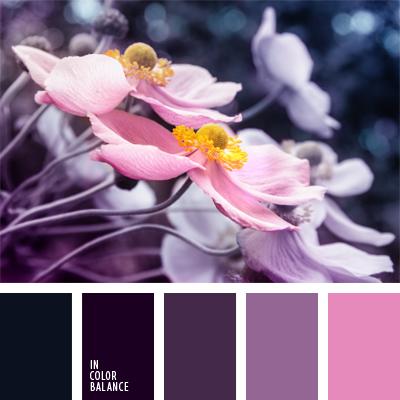 Paleta kolorów nr 537