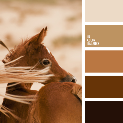 Paleta kolorów nr 538