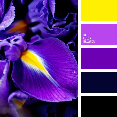 Paleta kolorów nr 539