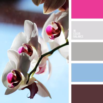 Paleta kolorów nr 542