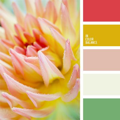 Paleta kolorów nr 549