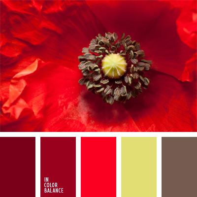 Paleta kolorów nr 555