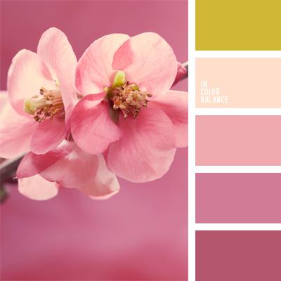 Paleta kolorów nr 557
