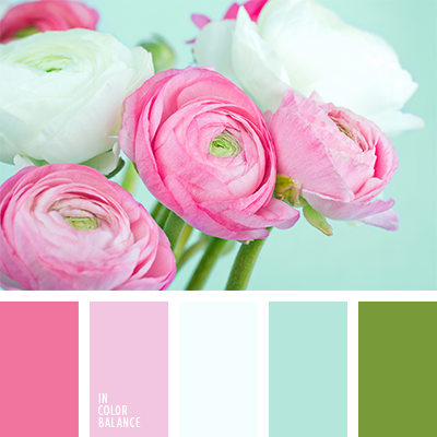 Paleta kolorów nr 1234