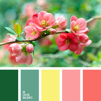 Paleta kolorów nr 1245