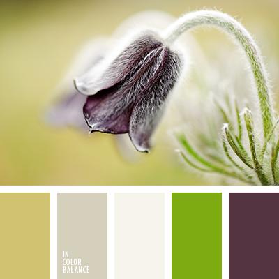 Paleta kolorów nr 1262