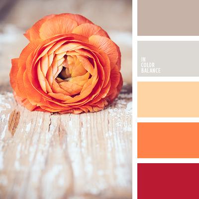 Paleta kolorów nr 1651
