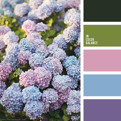 Paleta kolorów nr  1681