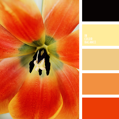 Paleta kolorów nr 2379