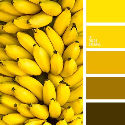 Paleta kolorów nr 2395