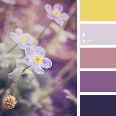 Paleta kolorów nr 2409
