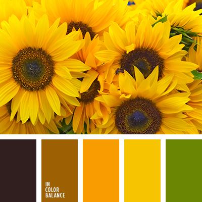 Paleta kolorów nr 2930
