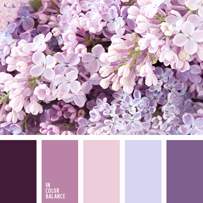Paleta kolorów nr 2931
