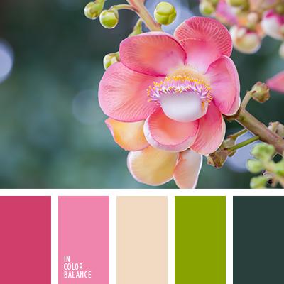 Paleta kolorów nr 2934