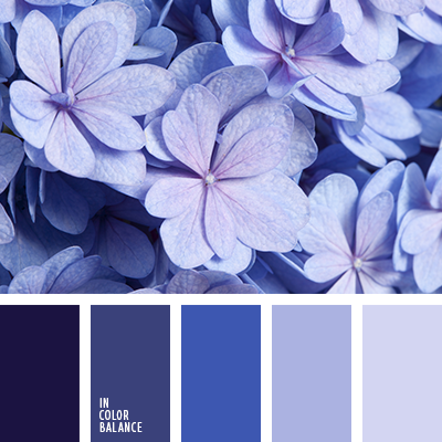 Paleta kolorów nr 2991
