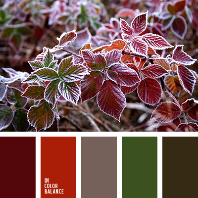 Paleta kolorów nr 3108