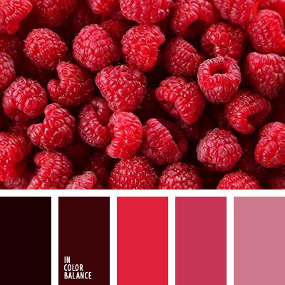 Paleta kolorów nr 3215