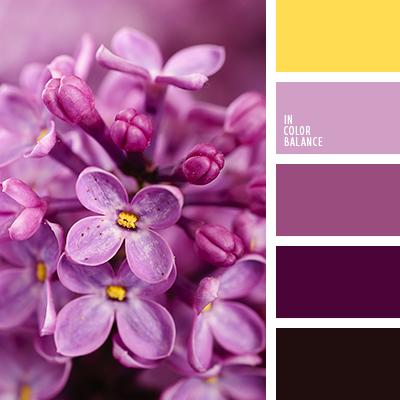 Paleta kolorów nr 3232