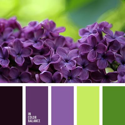 Paleta kolorów nr 3237
