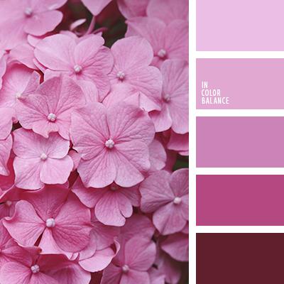 Paleta kolorów nr 3245