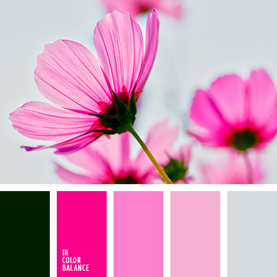 Paleta kolorów nr 3404