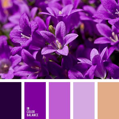 Paleta kolorów nr 3424